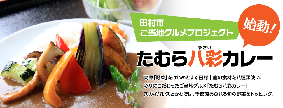 田村八菜カレー