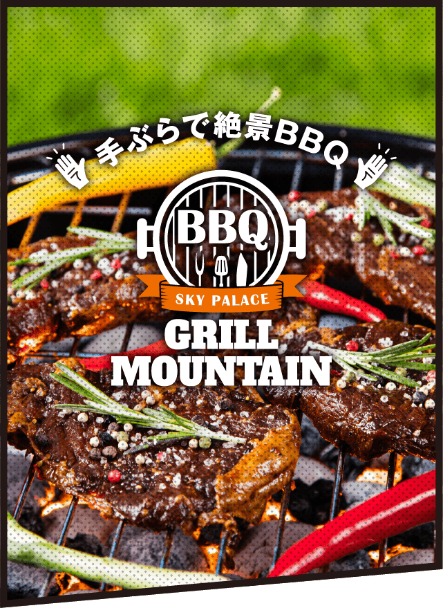 BBQ GRILL MOUNTAIN